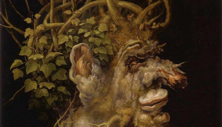 Winterflora im Spiegel von Mythologie und Volksglaube
